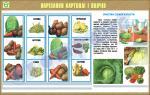 """Плакат """"Нарізання картоплі і овочів"""""""