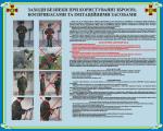 """Плакат """"Заходи безпеки при користуванні зброєю, боєприпасами та імітаційними засобами"""" код 4530205"""