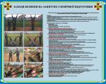 """Плакат """"Заходи безпеки на заняттях з фізичної підготовки"""" код 4530207"""