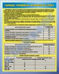 """Плакат """"Порядок перевірки гальмівного шляху"""" код 4530303"""