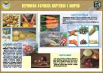 """Плакат """"Первинна обробка картоплі і овочів"""" код 4530601"""